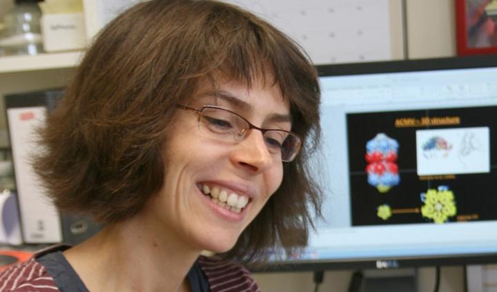 Katharina Hipp mit einem Modell des Afrikanischen Maniokmosaikvirus. Auf dem Bildschirm im Hintergrund ist dessen 3D-Rekonstruktion aus elektronenmikroskopischen Bildern zu sehen. (c) Helmine Breitmaier