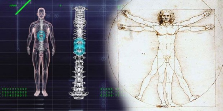 Digital models help to understand the highly complex 'human system'. (c)
