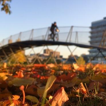 Eine Person fährt mit Fahrrad über eine Brücke auf dem Campus Vaihingen.