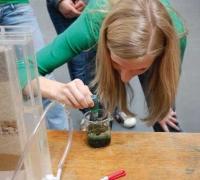Beim Projekt NASSY gibt es Experimente rund ums Wasser. (Foto: Institut)
