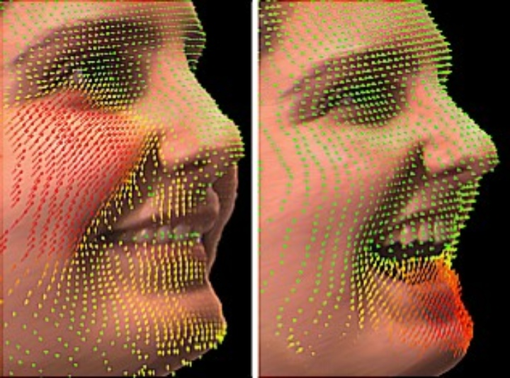 Facial Performance Capture
