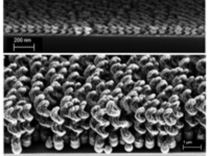 Nanopropeller