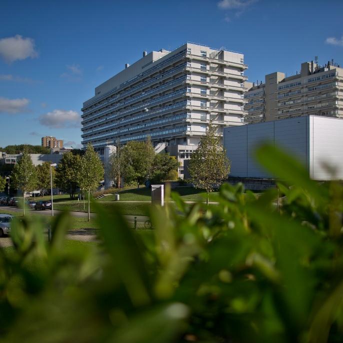 Campus Vaihingen: Der Pfaffenwaldring