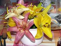 Lilien in einer Vase