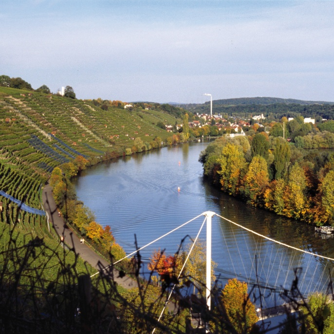 Stuttgart's famous river: the Neckar.
