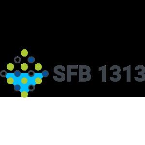 Logo SFB 1313