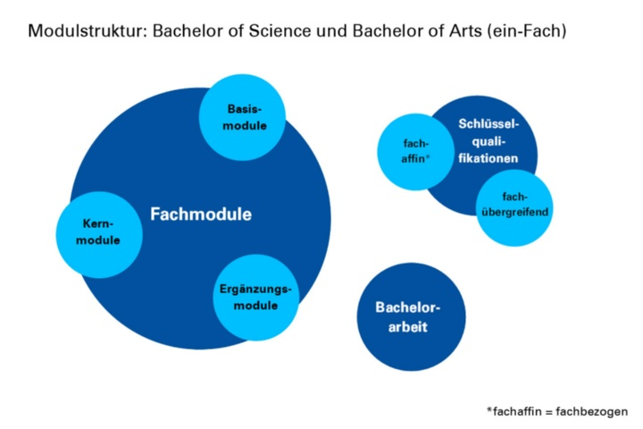 Modulstruktur von Bachelor of Science und dem Ein-Fach-Bachelor of Arts (c)
