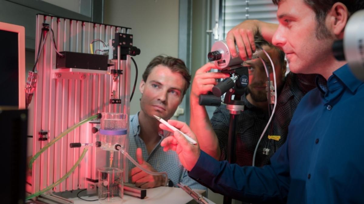 Untersuchung von Muskelpräparaten aus der Harnblase