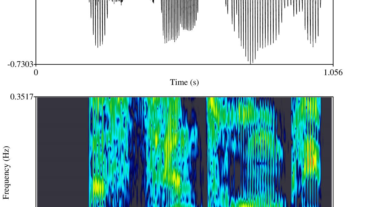 Spektogramm  IMS