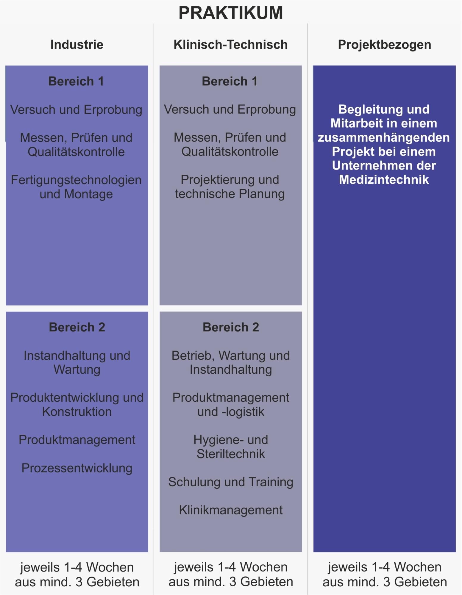 Grafik des industrie- oder klinisch-technischen Praktikums im Studiengang Medizintechnik M.Sc.