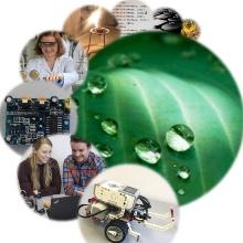 4 Bilder zu Naturwissenschaft und Technik Nina Matic, Mira Latzel