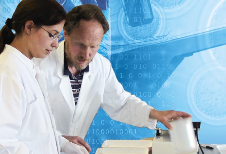 Foto: Technische Biologie/Institut für Biomaterialein und biomolekulare Systeme