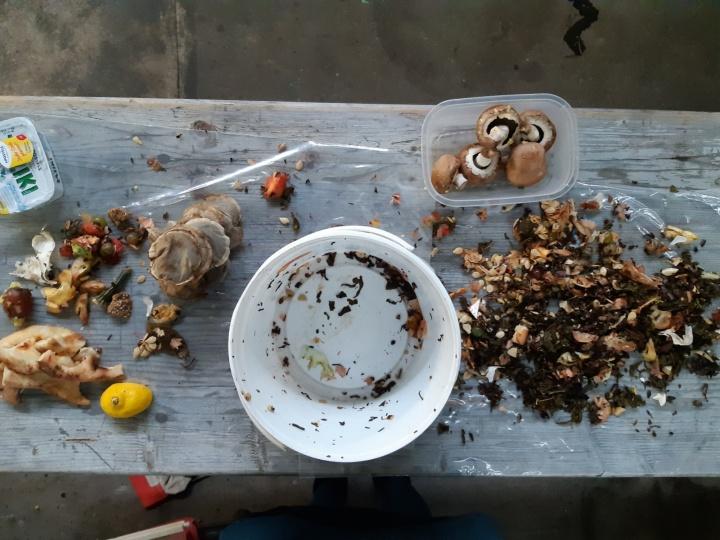 Preparation of the kitchen waste