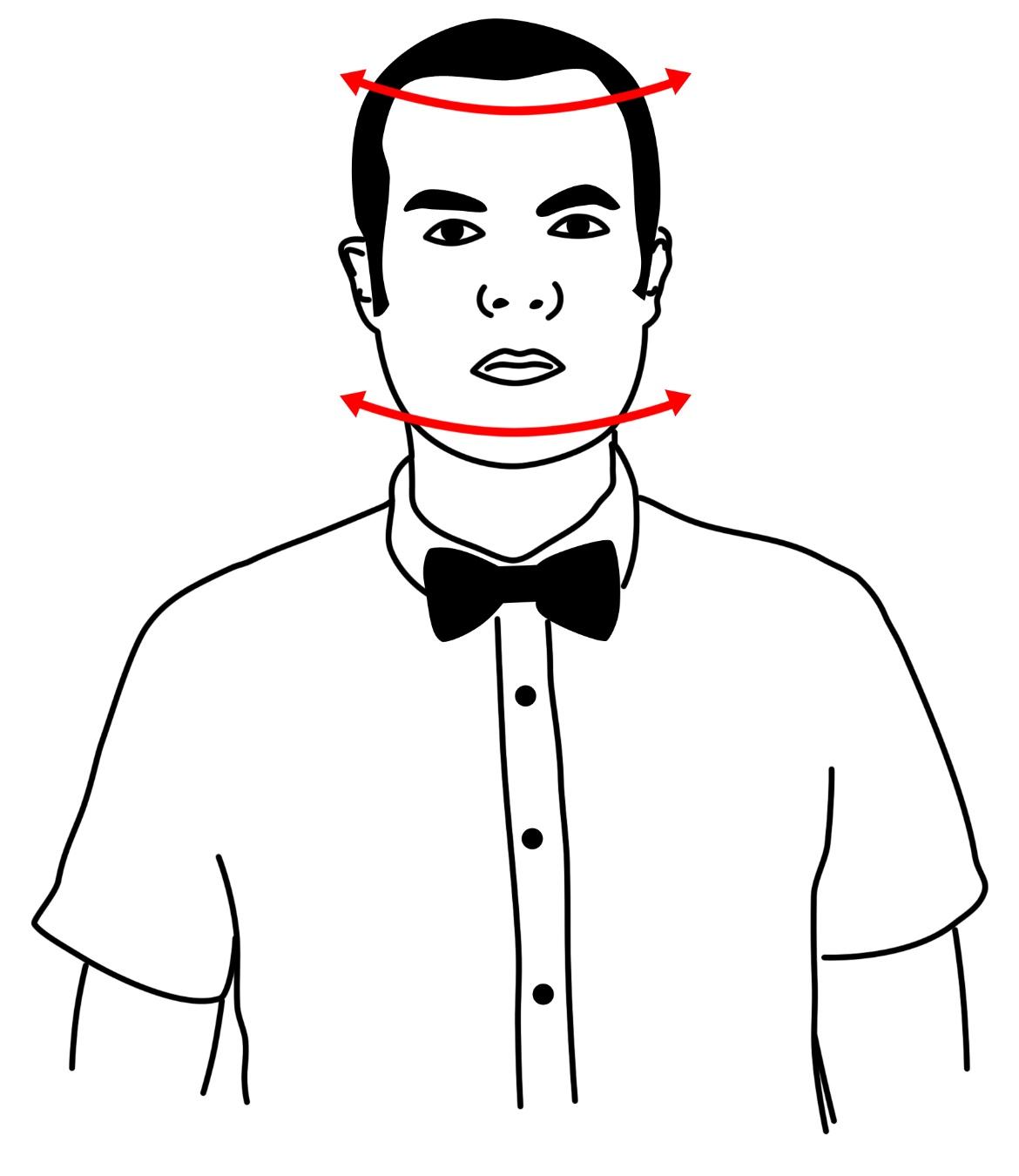 Schematic representation of head shaking