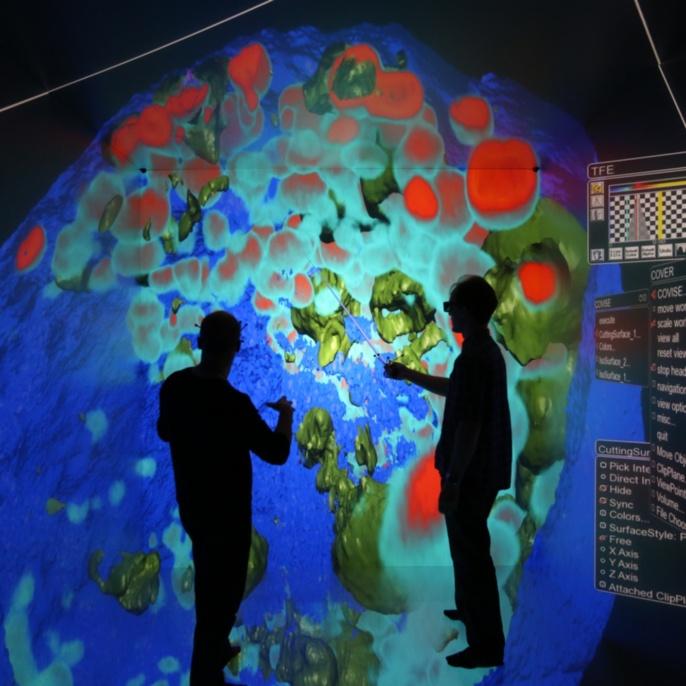 Immersive Visualisierung des Wachstums von Multizellulären Sphäroiden, Emmanuel Reynaud, Uwe Wössner