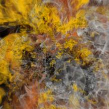 Blick ins Innere einer Supernova. John M. Blondin; rendering: Valentin Bruder.