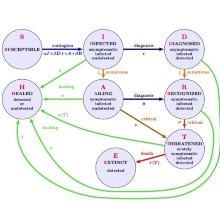 Mathematisches Modell, das die Forschenden zur Prädiktion und Simulation nutzen. (Ausschnitt)