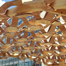 The research pavilion of the BioMat group led by Jun.-Prof. Hanaa Dahy, made of curved wooden and biocomposite elements. In the future, expertise like this is to become part of a research network across the university.