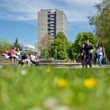 Grüne Frühlingswiese auf dem Campus Stadtmitte.