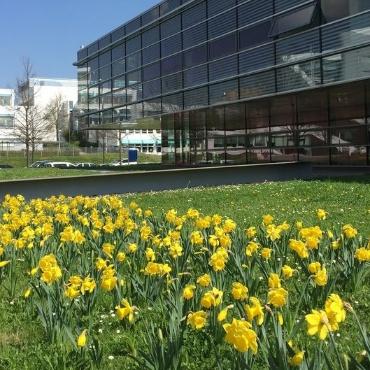 Das HLRS auf dem Campus Vaihingen mit Blumenwiese im Vordergrund.